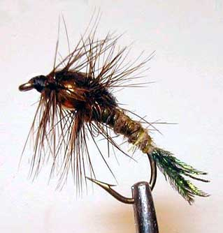 Bead Thorax Nymph Fly Pattern
