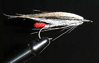Black Nose Dace Fly Pattern