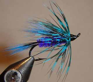 Blue Hairwing fly pattern