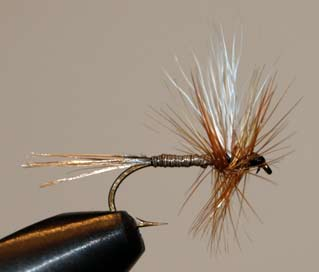 Bradley Fly Pattern