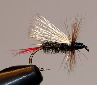 Caplis Fly Pattern