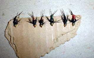 Copper John fly pattern
