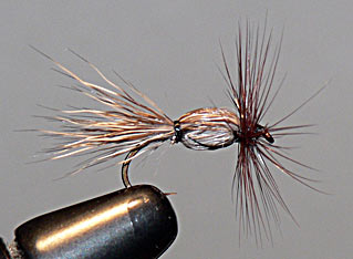 Deer Hair Popper Fly Pattern
