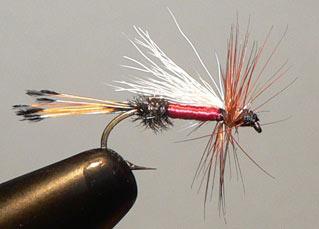 Dr. Kirgen Fly Pattern