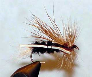 Dry Skunk Fly Pattern