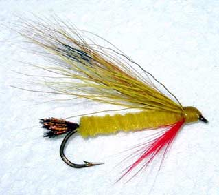 Edison Tiger Fly Pattern