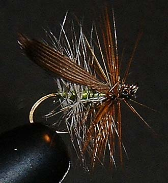 Henryville Special Fly Pattern