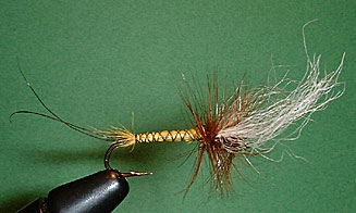 Hex Spinner Fly Pattern