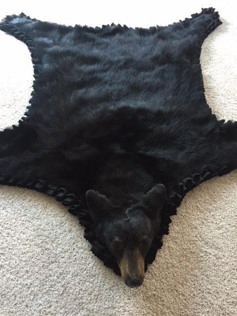 Not A Typical Black Bear Mount But It Turned Out Cool My Young Daughter Wouldn T Come Into Office For Of Years