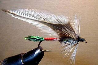 Dark Spruce Fly Pattern