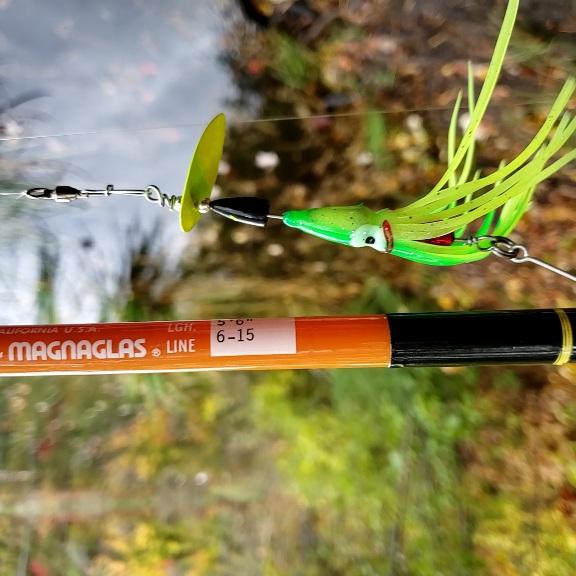M-S 10102020 squid spinner .jpg