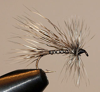 North Branch Drake Fly Pattern
