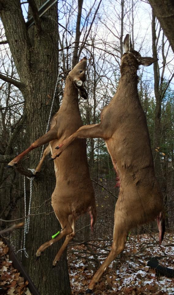 "We hung two does on the ""buck"" pole on opening day of the 2014 Firearms Deer Season."