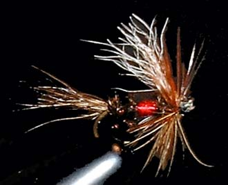 Royal Wulff Fly Pattern