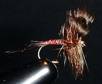 Rusty's Spinner Fly Pattern