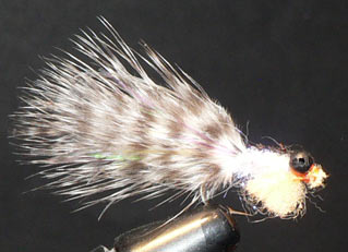 Salmon Fry Fly Pattern
