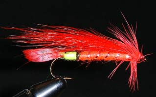 Scarlet Ibis Fly Pattern