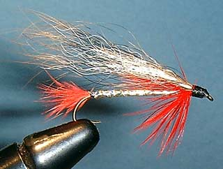 Squirrel Tail Streamer Fly Pattern