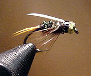 TH-Prince fly pattern