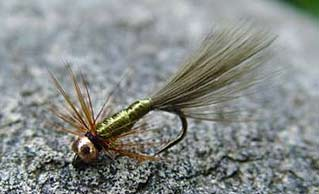 The Misfit fly pattern