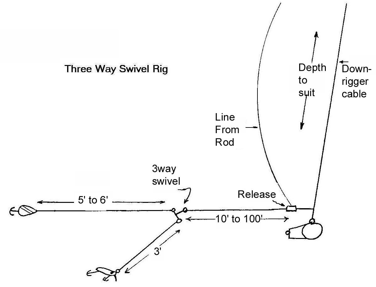 Three way swivel rig