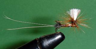 Tim's Brown Drake Fly Pattern