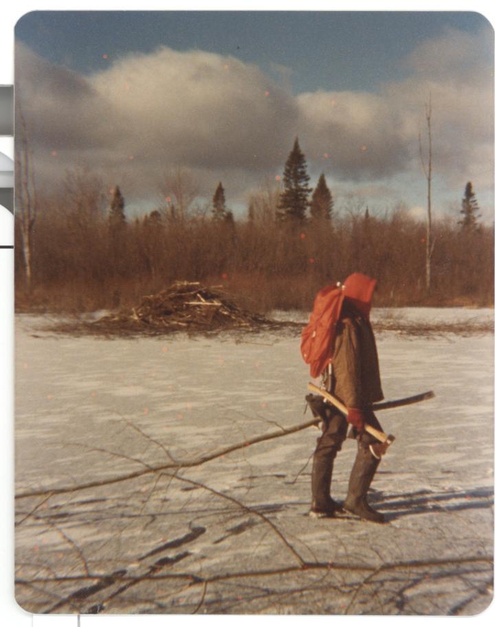 trapping photos (258)