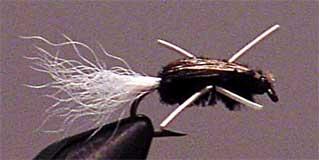 Wet Skunk fly pattern