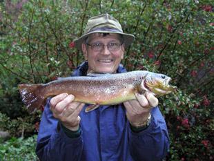 whitmore fish