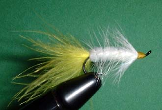 Wolly Bugger Fly Pattern