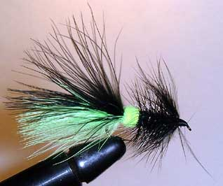 Wolly Bugger Variation Fly Pattern