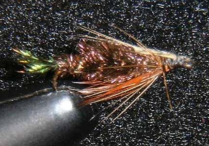 Zug Bug fly pattern