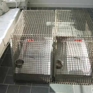 Kennel-Aire Dog Crates 008