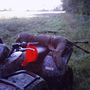 2009 E.A.S. Opening Day Doe On Quad, Sanilac County, Michigan
