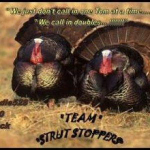 Team Strut Stoppers Sign