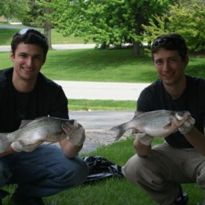 "My brother and I with our Master Angler White Bass: 16.5"" 2lb 3oz  & 15.5"" 2lb 1oz"