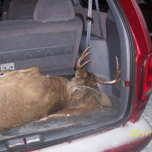 moms minivan worked great as a deer hauler