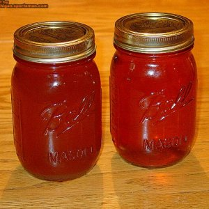 2 pints of Michigan maple syrup!