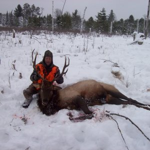 2009 Michigan Elk---December Hunt